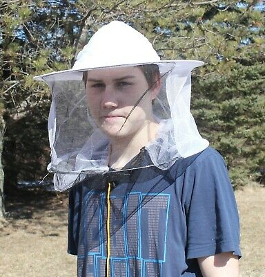 Beekeeping Bee Keeping Hatveil