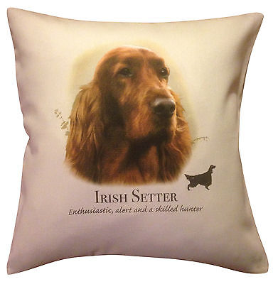 Irish Red Setter Dog | Quality Cream or White 100% Cotton Cushion Cover & Zip