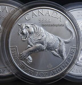 2016-Canada-Predators-Cougar-Puma-1onza-plata-pura-encapsulada-Silver