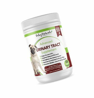 Grain Free UTI Supplement for Dogs – Prevents Urinary Tract Infections in Dog...