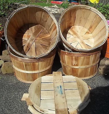 Bushel Baskets with LIDS Metal Handles Closures Home Crafts Crabs Apples 4 PC