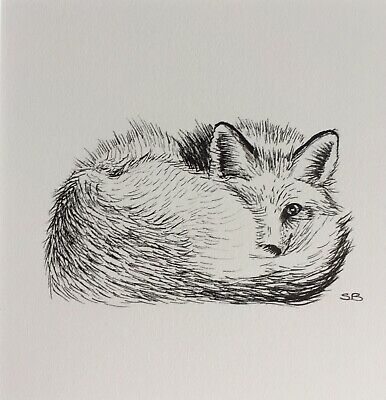 Original Artwork by Sungy Drawing Peeping Fox