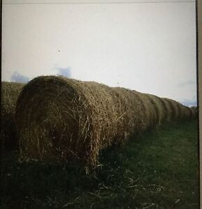 Good hay for sale!!!