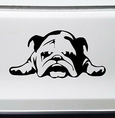 BULLDOG Vinyl Sticker -V4- English Bully Dog Puppy American - Die Cut