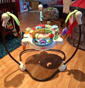 Fisher-price Luv v Zoo Jumperoo Secret Harbour Rockingham Area Preview