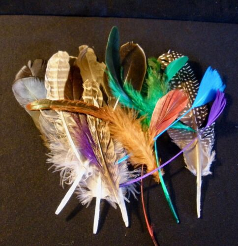"""20 Mixed Feathers - SECONDS - assorted 3""""-7""""- free quick ship from CA!"""