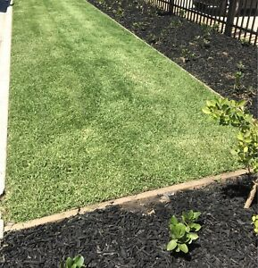 CT LAWN CARE ( Western & Northern Suburbs )