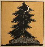 The Cedar Trunk