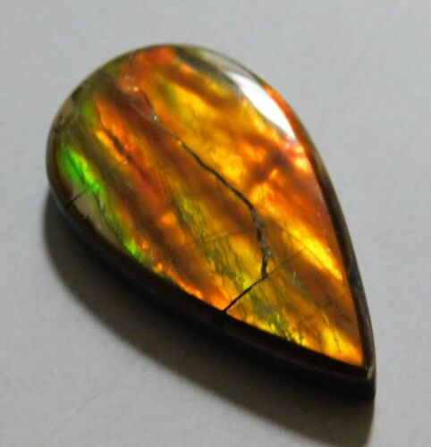 12.15 Cts Natural Canadian Ammolite Cabochon Loose Gemstone 25X13.7X4 MM ZXW23
