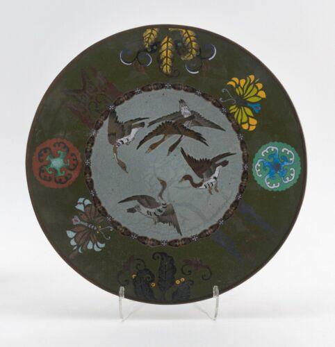 Antique 19c. Japanese Cloisonne Charger Plate Platter OLD Butterflies Birds