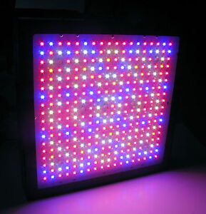 gro lights full spectrum 700 watt led grow light 1000w hps 1000w hid. Black Bedroom Furniture Sets. Home Design Ideas