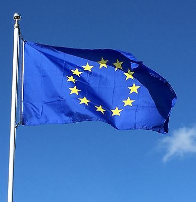 5ftx 3ft EU European GB Referendum Vote Flag *Special Offer for the vote only*