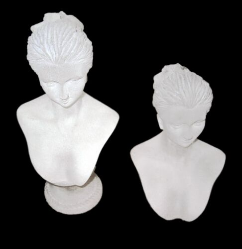 NEW Set of 2, Frost Acrylic Jewellery Necklace Earring Bust Shop Display Stands