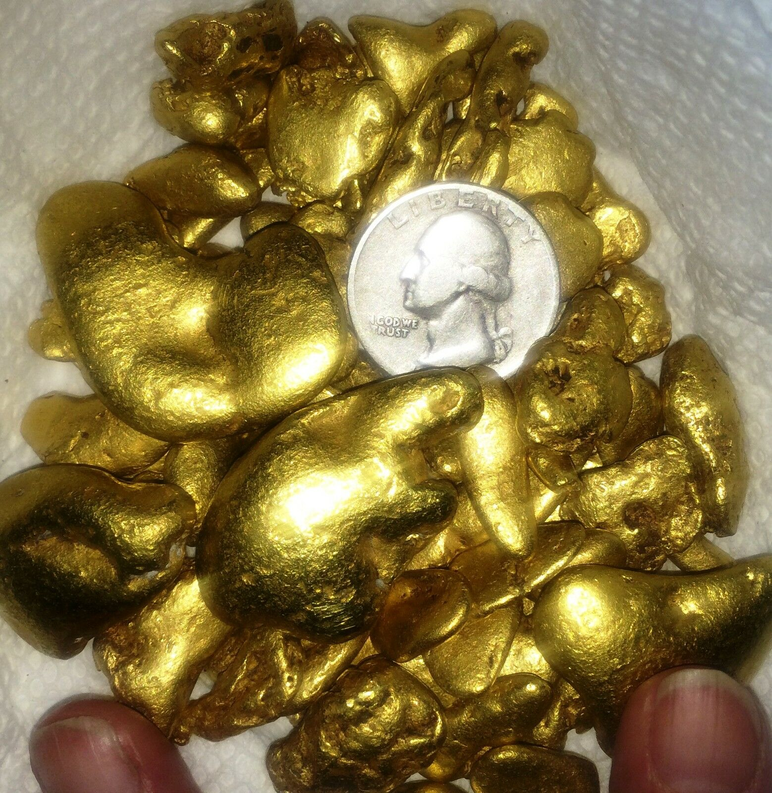 Judy's Alaska GOLD NUGGETS