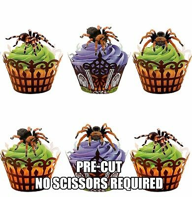 Halloween Birthday Cake Decorations (PRE-CUT Tarantula Spiders Edible Cup Cake Toppers Decorations Halloween)