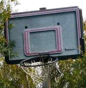 Lifetime  Basketball Hoop Prospect Launceston Area Preview