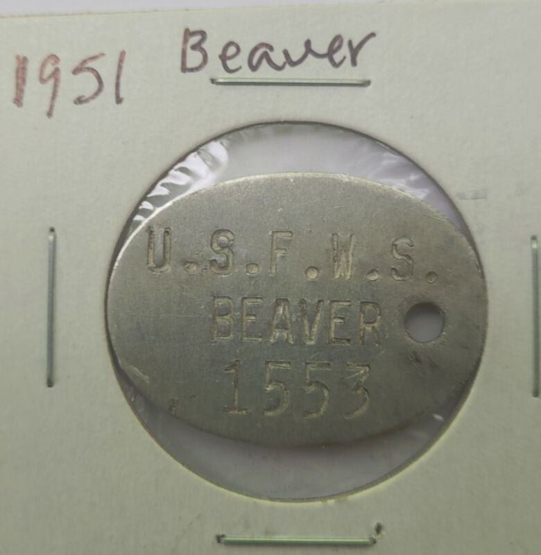 1951 Upper Mississippi Beaver Trap Tag Trapping
