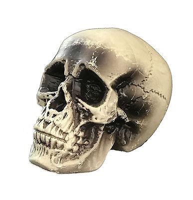 Halloween Schädel / Totenkopf Deko Tischdeko Skelett Grusel Figur Horror 361