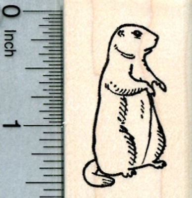 Groundhog Day Rubber Stamp, Facing Right D31614 WM](Groundhog Day Crafts)