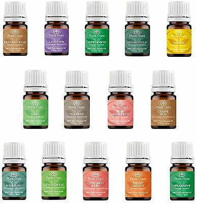 Essential Oil Set -14 Pack -100% Pure Natural Therapeutic Grade Oils Lot 5 ml.