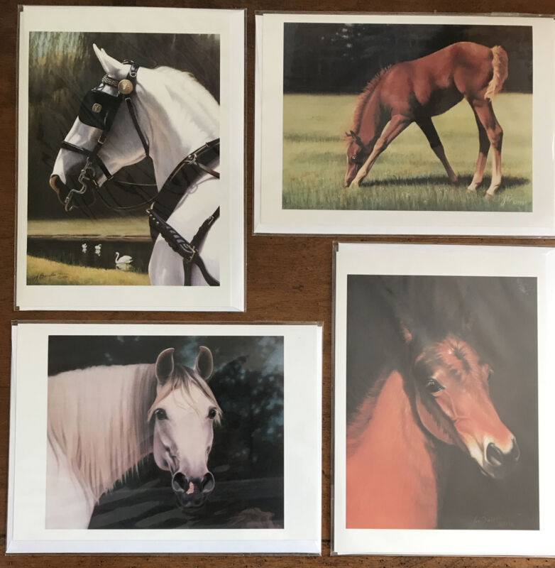 Equestrian Blank Greeting Cards Set Of (4) - Prints by Jean Barrows Horses Foals