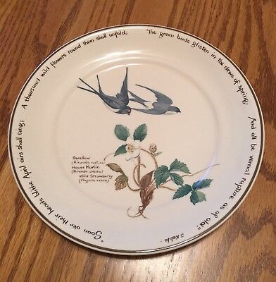 Noritake Country Diary Edwardian Lady Salad / Bread & Butter Plate