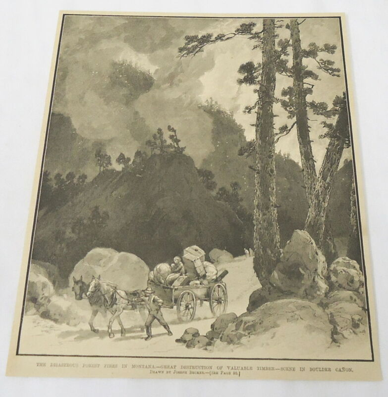 1889 magazine engraving ~ FOREST FIRES IN MONTANA ~ Boulder Canyon ~ Timber