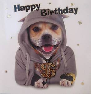 Funny Staffie Dog Birthday Card / Staffordshire Bull Terrier / Bling ...