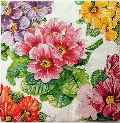 - FLORAL PRIMROSE  2 single LUNCH SIZE paper napkins for decoupage 3-ply