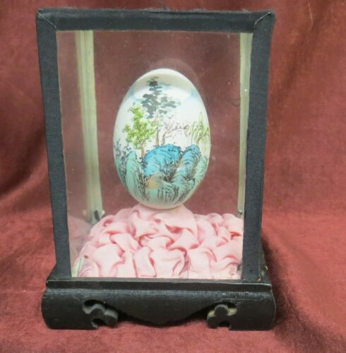 Vintage Chinese Hand Painted Egg in Glass Display Case