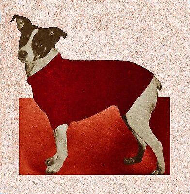Vintage Knitting Pattern Instructions Pet K9 Dog/Cat Sweater Coat Blanket CXI