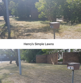 Henry's Simple Lawns