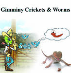 gimminy-crickets-worms