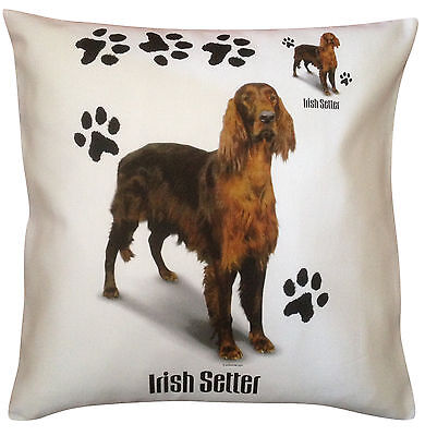 Irish Setter Red Setter Paws Breed of Dog Cotton Cushion Cover - Perfect Gift