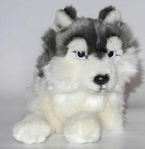 Neuware wunderschöner liegender Hund Husky ca. 35cm lang