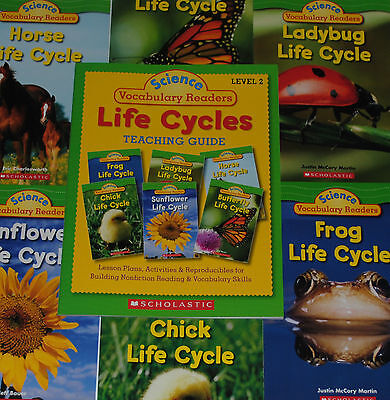LOT 6 Life Cycles Books Nonfiction Guided Reading Level J K Grade 1 2 Homeschool - Level K Reading