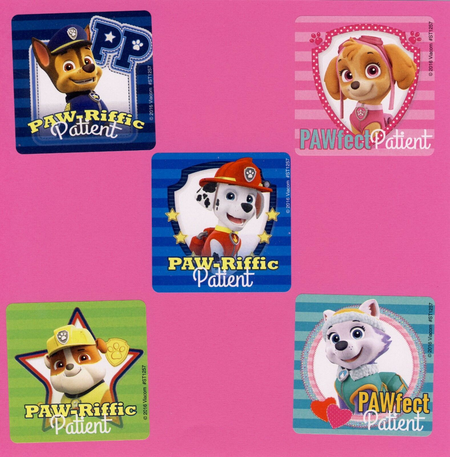15 Paw Patrol Dogs Patient - Large Stickers  - Skye, Marshal