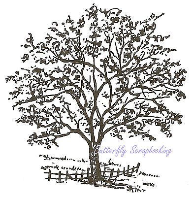Tree with Fence Wood Mounted Rubber Stamp NORTHWOODS Rubber