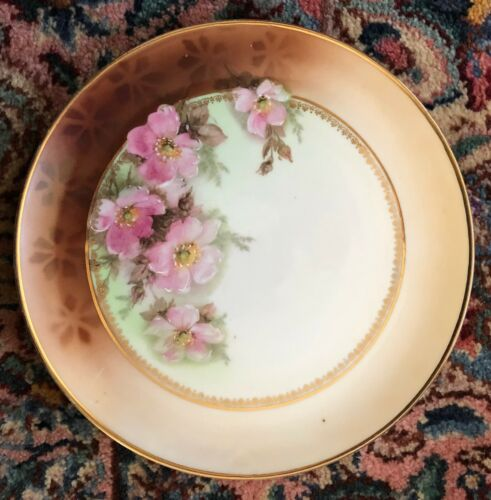 Antique German Porcelain Plate with Wild Rose Floral Design, Gold Accents