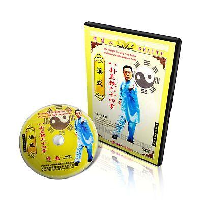 Liang Style BaGua Series - Ba Gua Strainght Trip 64 Palms by Zhang Quanliang DVD
