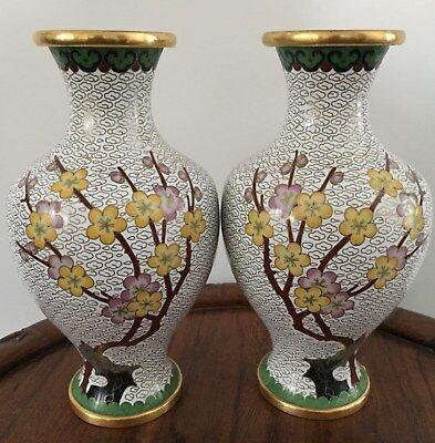 Pair 19th/20thc Chinese Cloisonne VasePlum blossom Motifs 21.5cm tall