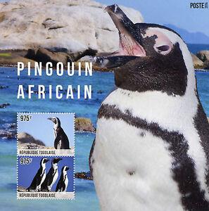 Togo-2014-MNH-African-Penguin-2v-S-S-Birds-Pingouin-Africain