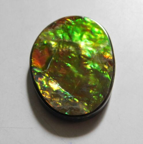 69.60 Cts Natural Canadian Ammolite Cabochon Loose Gemstone 38X28.5X6MM MD12