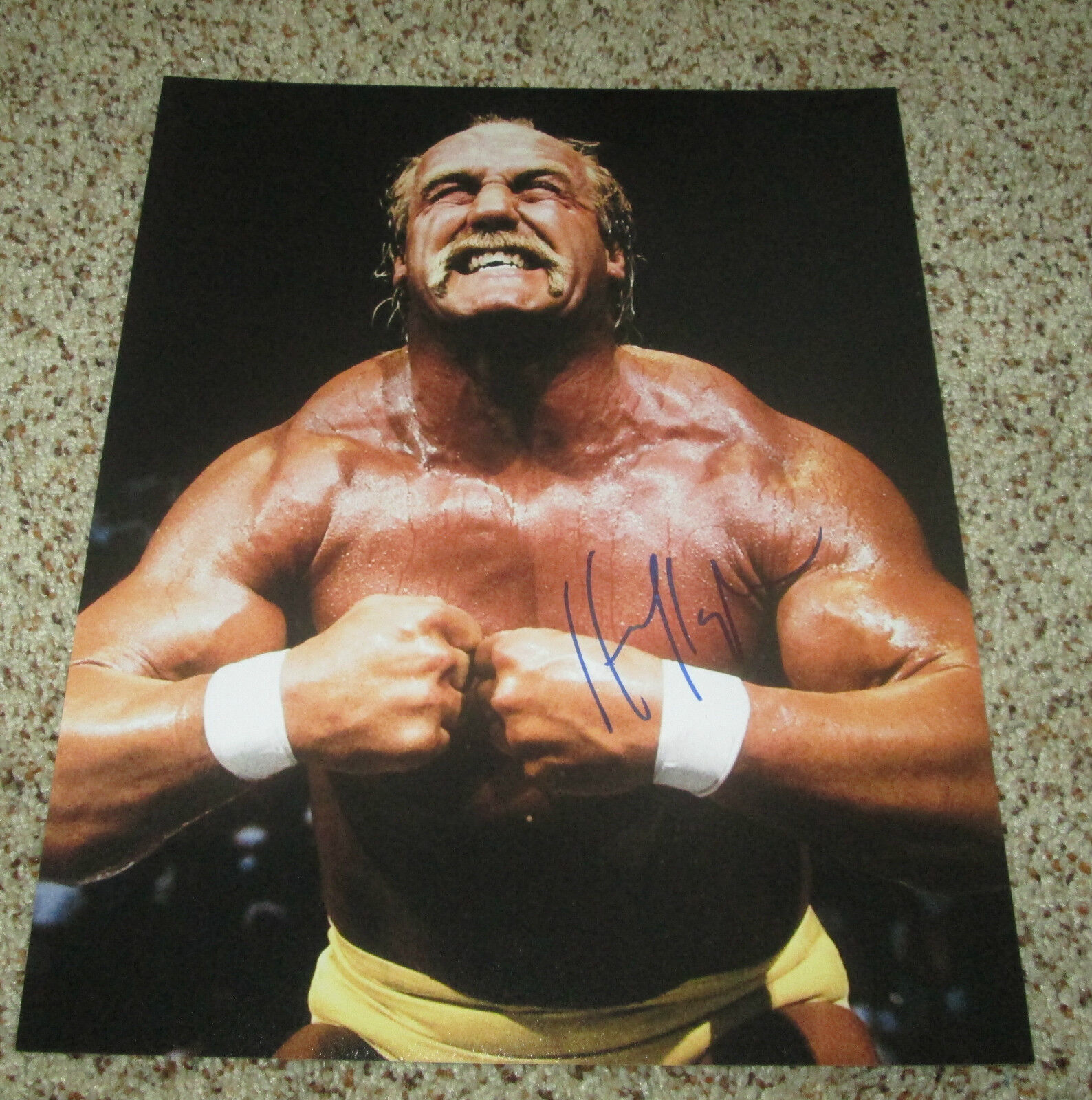 Wwe tna jeff hardy autographed 11x14 photo auto signed autograph - Hulk Hogan Signed 11x14 Wwe Photo Hulkmania With Proof