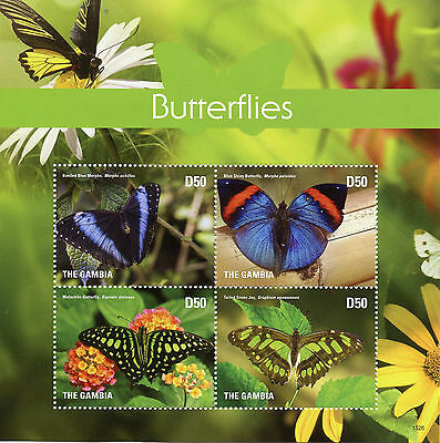 Gambia 2015 MNH Butterflies Blue Morpho Malachite 4v M/S II Butterfly Stamps