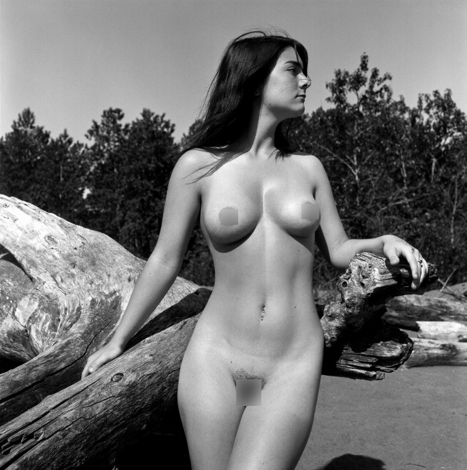 Nude fine chicks — pic 1