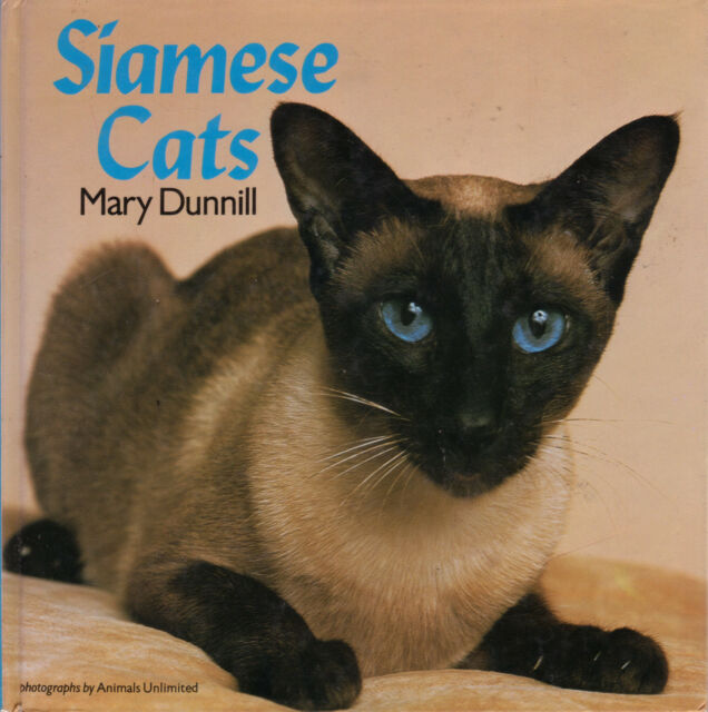 SIAMESE CATS Mary Dunnill **GOOD COPY**