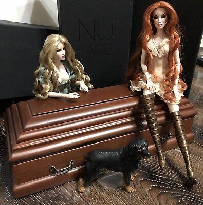OOAK 1/6 Amazing Realistic Wood Coffin Fashion Royalty Bride of Dracula Barbie