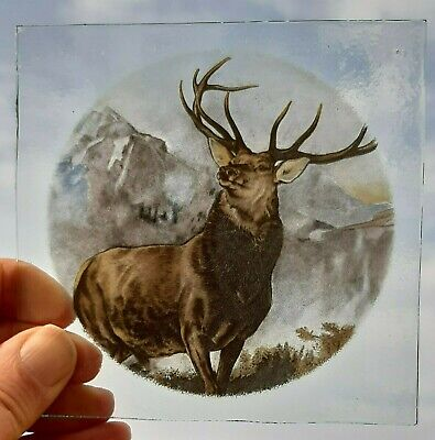 Stained Glass Stag Monarch Of The Glen Kiln fired piece 11.5 CM X 11.5 CM
