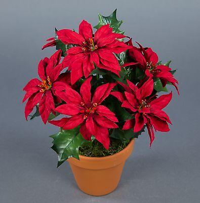 Weihnachtsstern 22cm rot im Topf AR künstliche Blumen Kunstblumen Kunstpflanzen